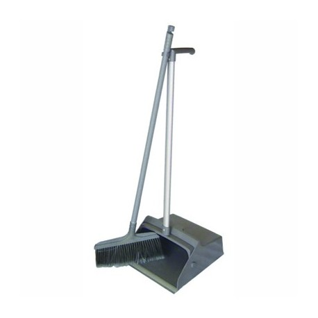 Swinging dustpan with broom