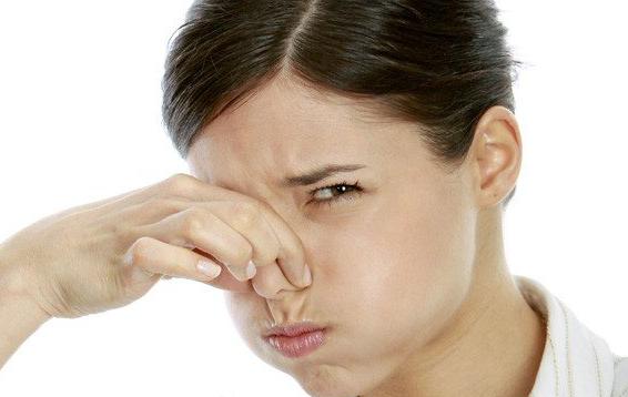 ambientador olores bano 1