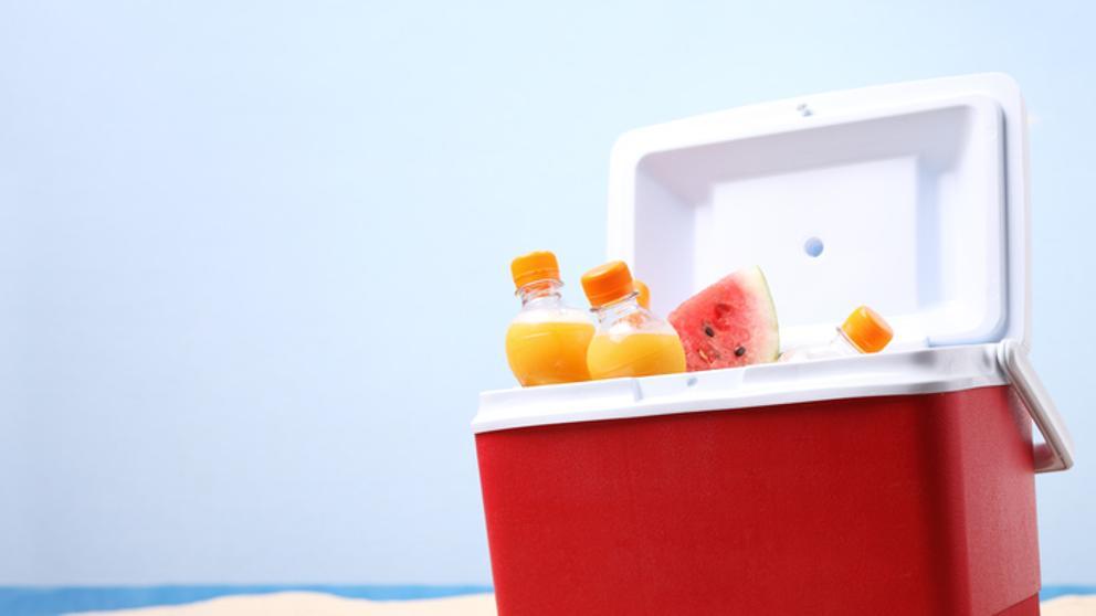 Especial Verano…  Limpia tu nevera de playa y mantenla en buen estado.